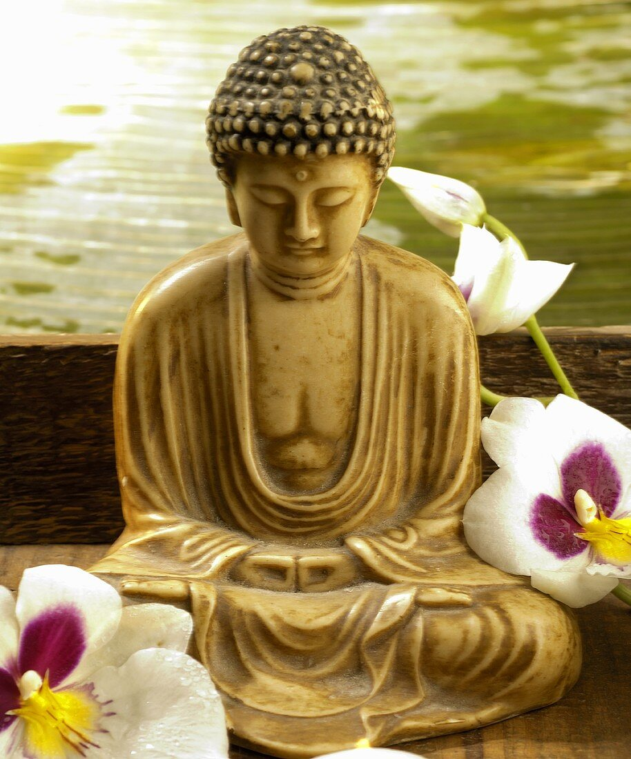 Buddha statue and orchid flowers