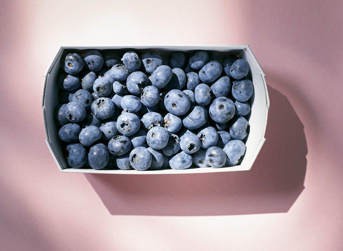 Blueberries in a cardboard punnet