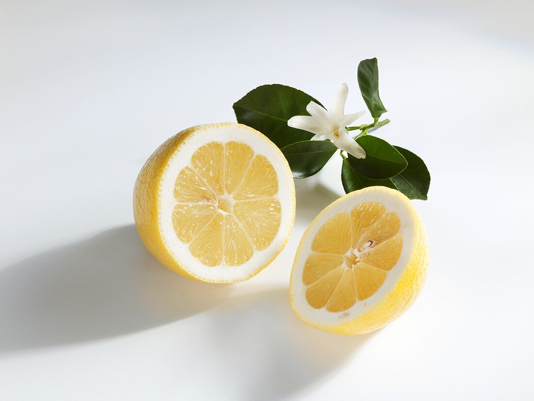 Halved lemon with leaves and blossom