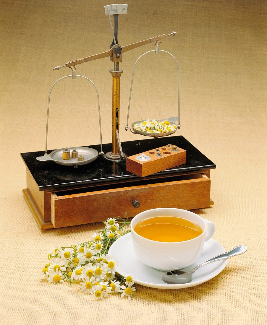 Camomile flowers, a set of precision scales and a cup of camomile tea