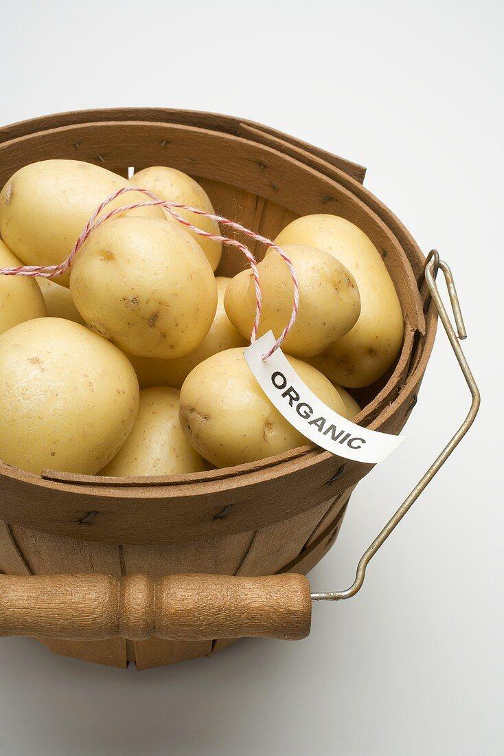 Organic potatoes in woodchip basket