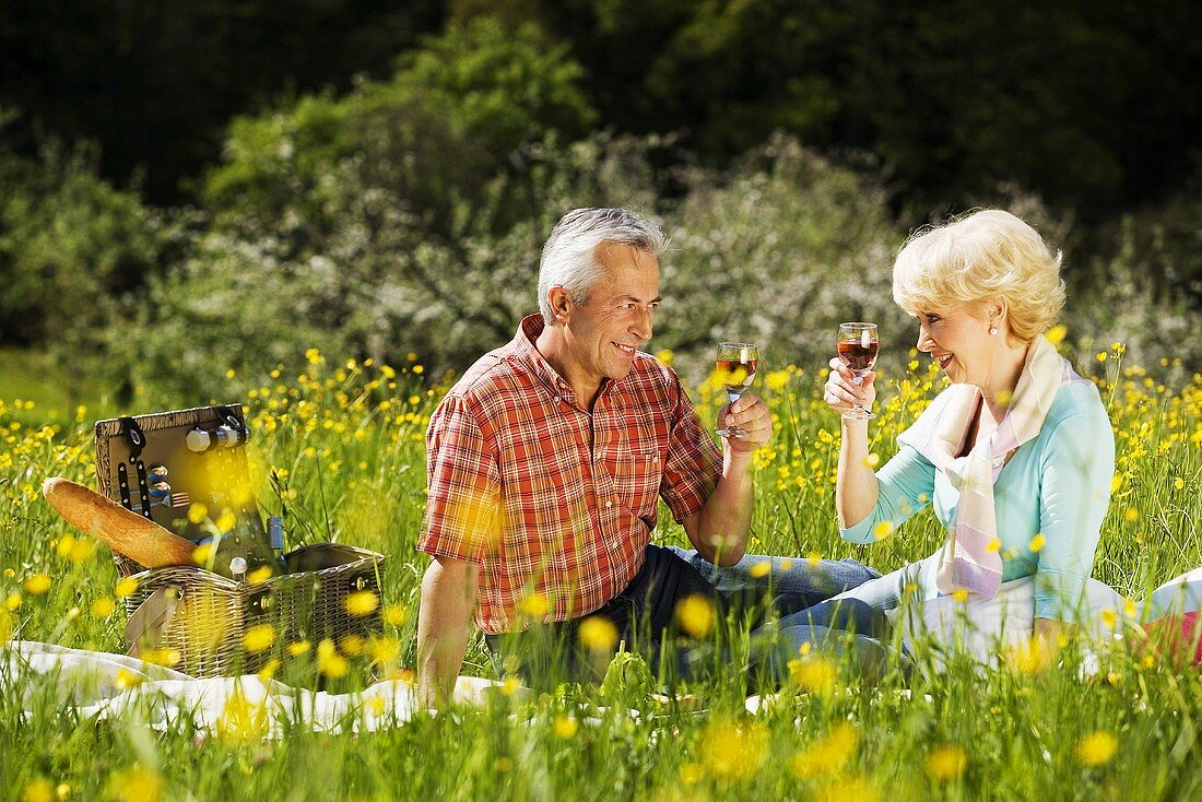 Senior couple with wine at picnic
