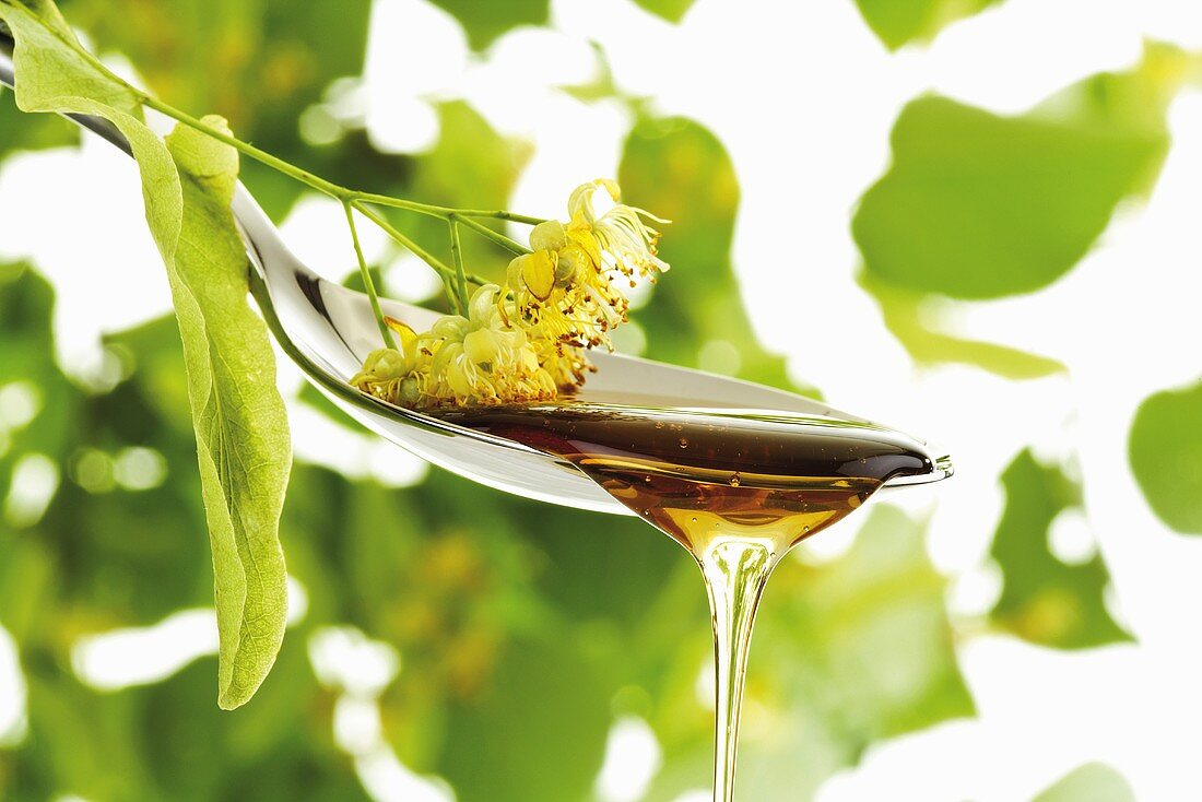 Lime blossom honey dripping from spoon