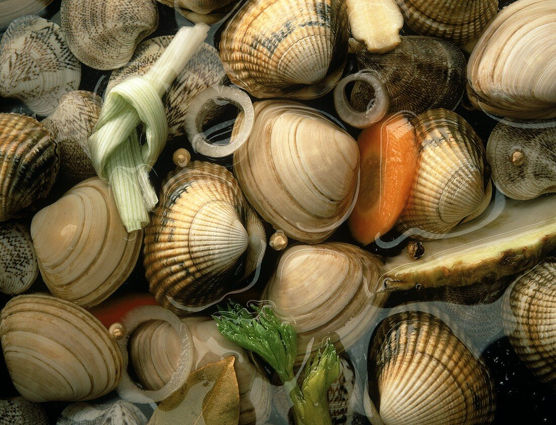 Assorted Clams in a Vegetable Broth