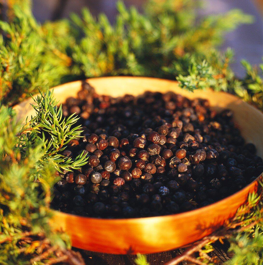 Juniper berries in a bowl