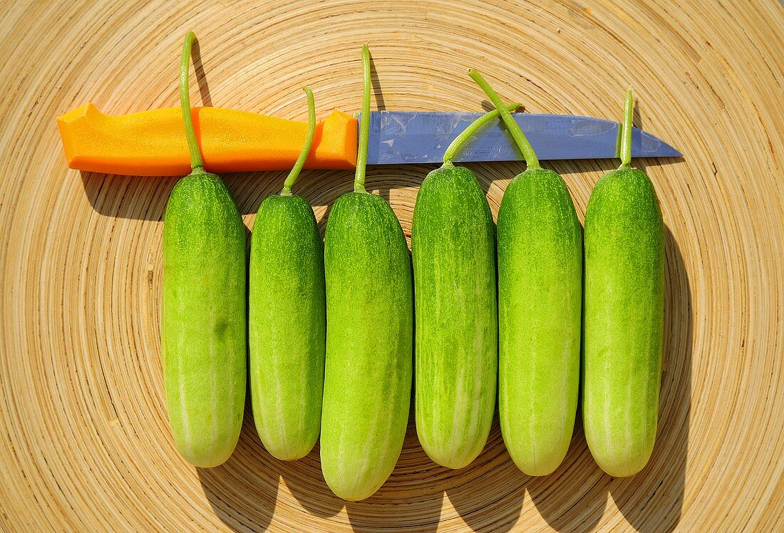 Six cucumbers with knife