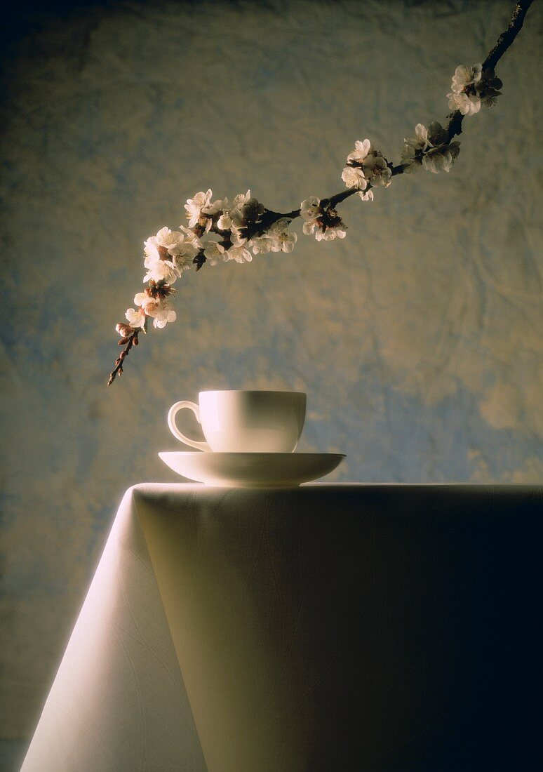 China cup; sprig of flowers