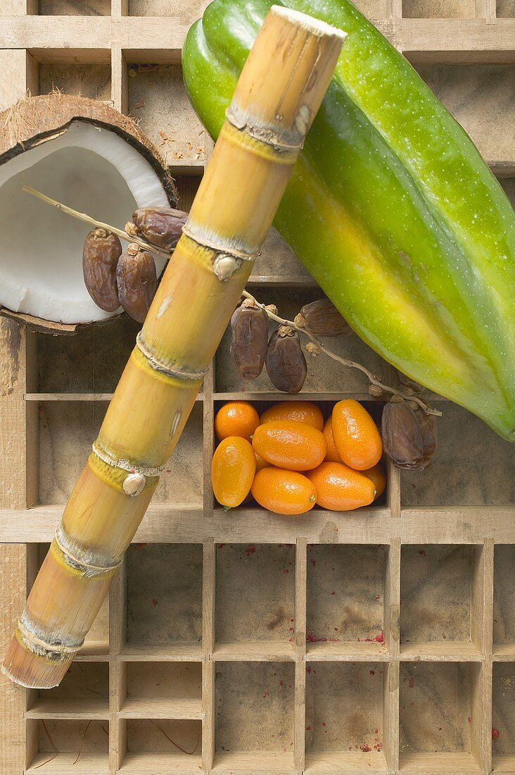Exotic fruit, coconut and sugar cane in type case