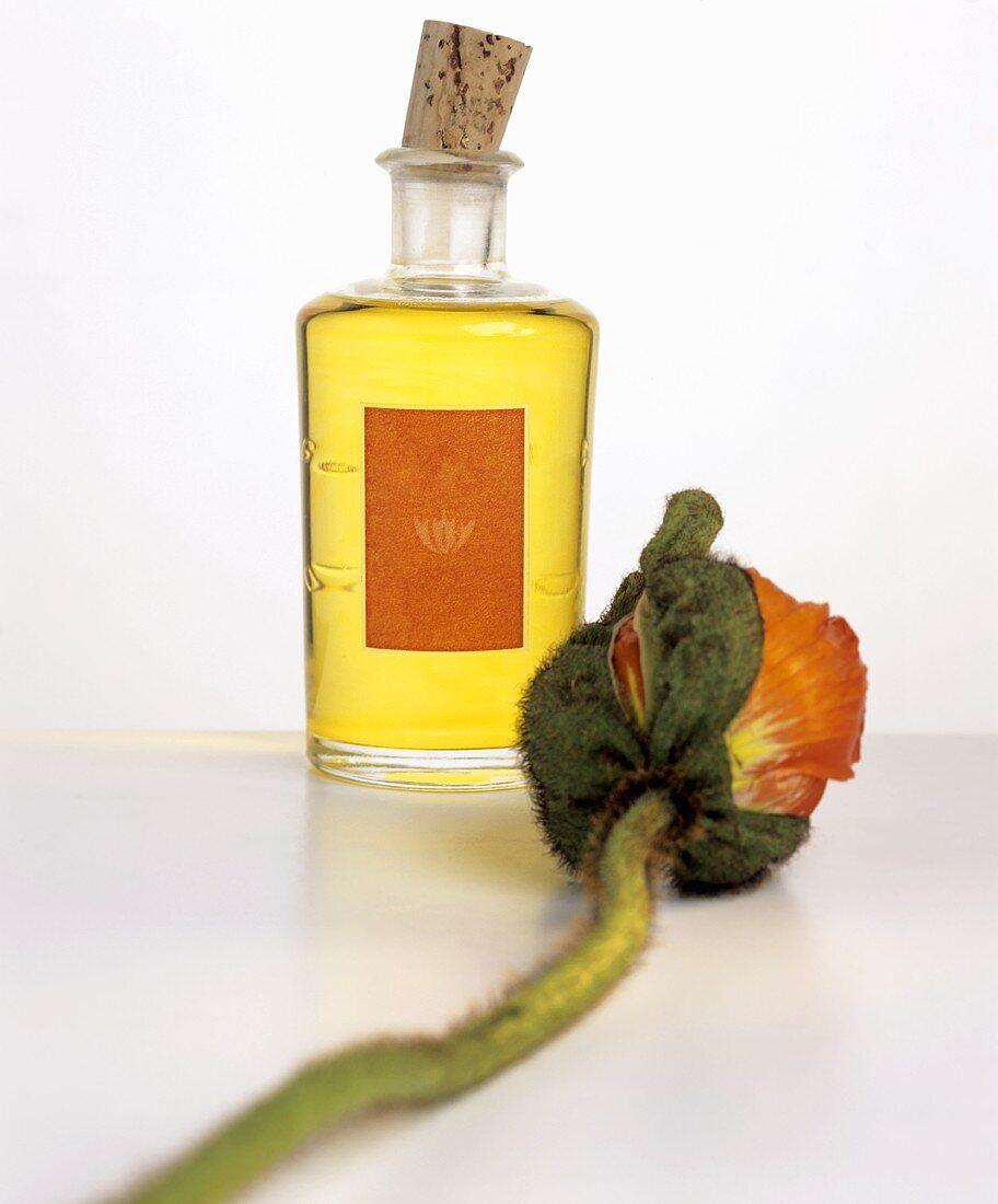 Poppy seed oil in small bottle, poppy beside it