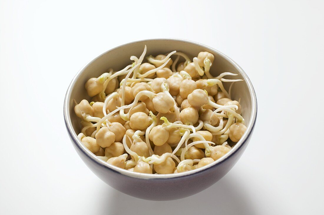Chick-pea sprouts in a bowl