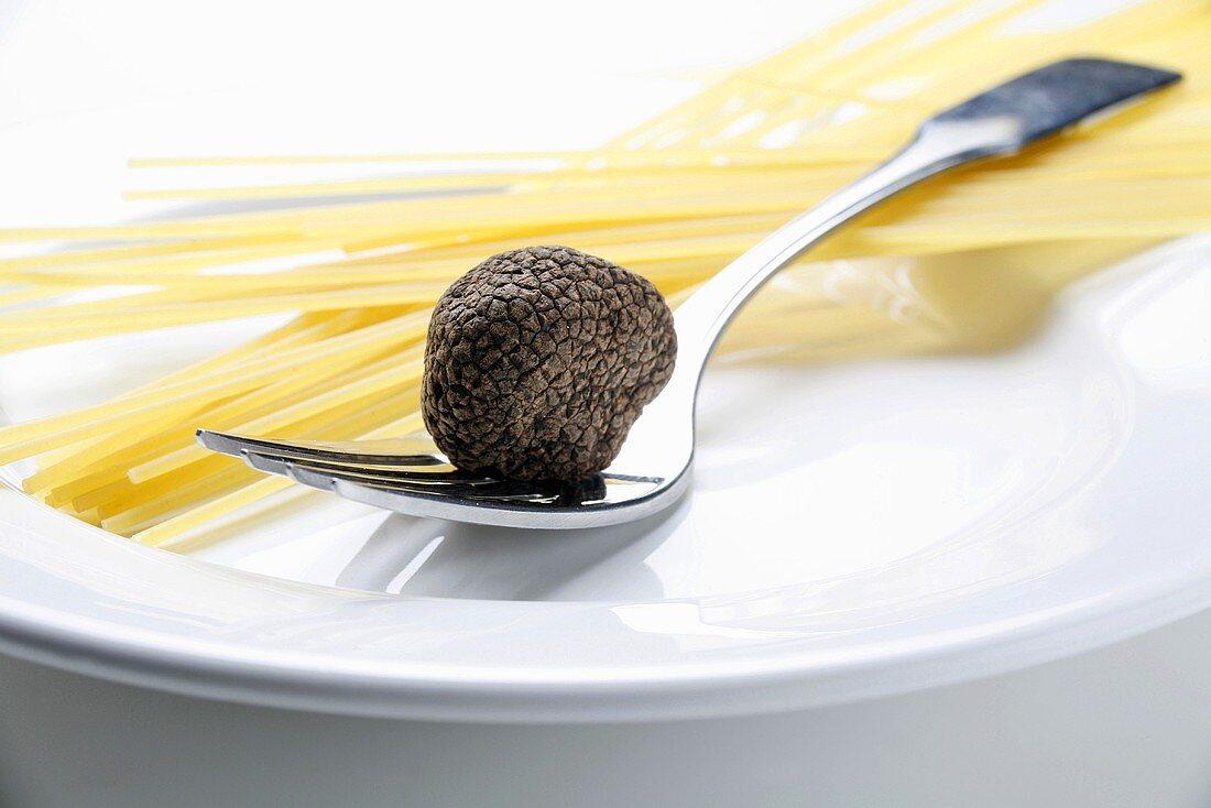 Black truffle (Chinese truffle) on fork & spaghetti on plate
