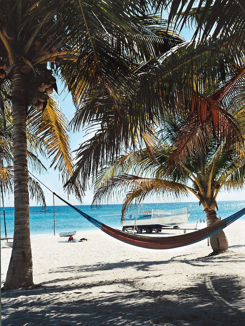Hängematte unter Palmen am Strand Riviera Maya in Mexiko, Karibik
