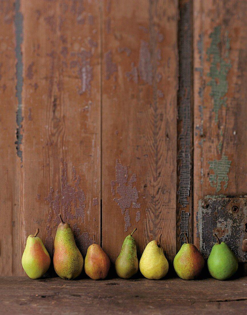 Verschiedene Sorten Birnen aufgereiht vor einer Holzwand