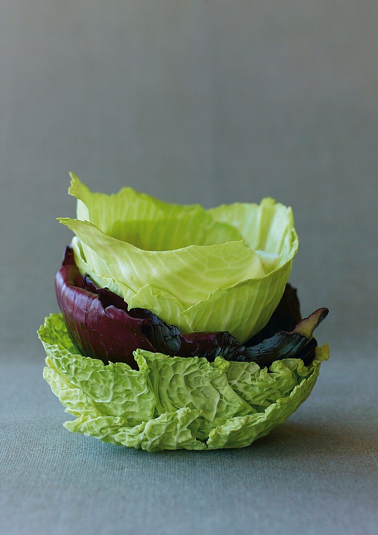 A stack of various cabbage leaves
