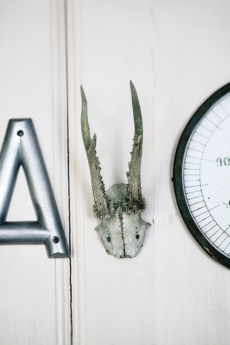 Wall decoration: a decorative letter, antlers and a clock