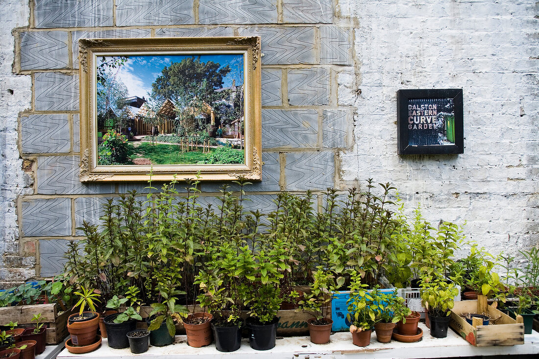 View of Dalston Eastern Curve Garden wall with painting, Hackney, London, UK