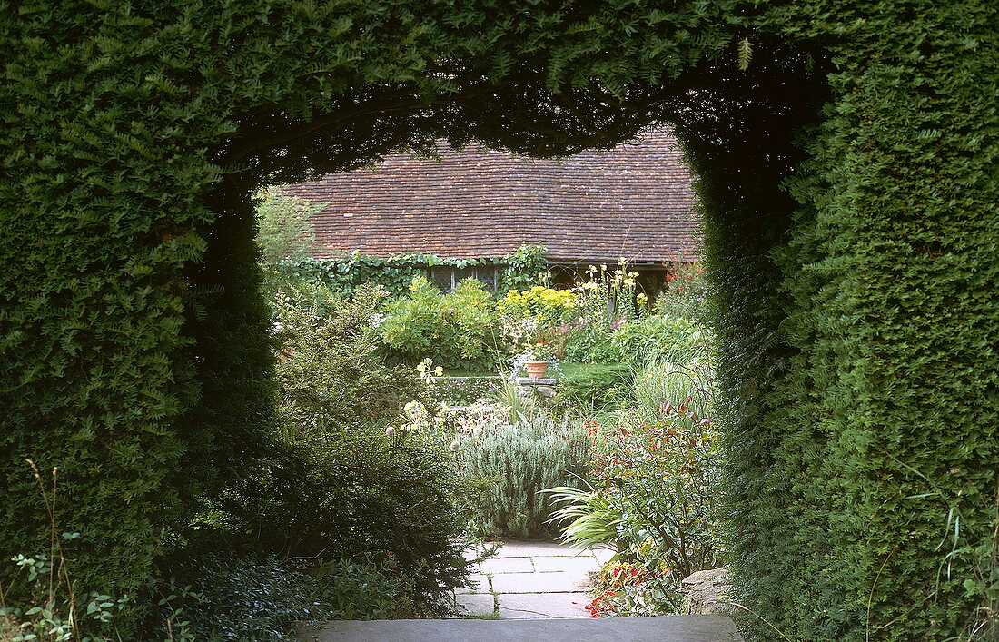 View of Great Dixter House roof and garden through hedge