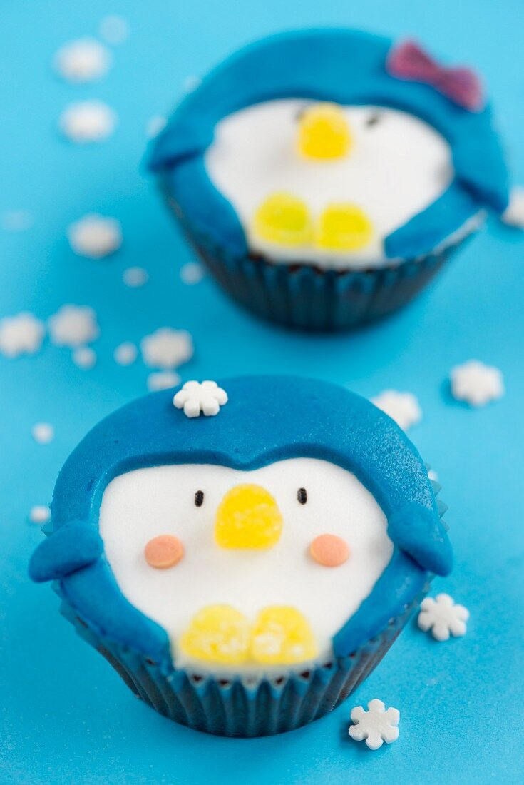 Winter cupcakes with faces