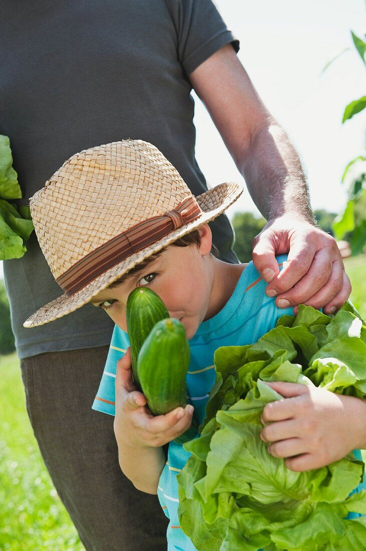 A boy standing in a vegetable garden with his grandfather holding lettuce and cucumbers