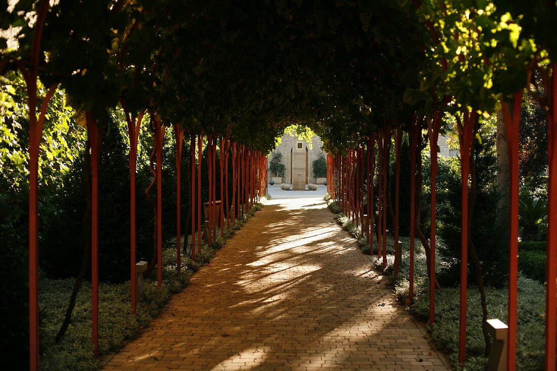 Walkway; Grape Arbor at Marques de Riscal Winery in Rioja, Spain