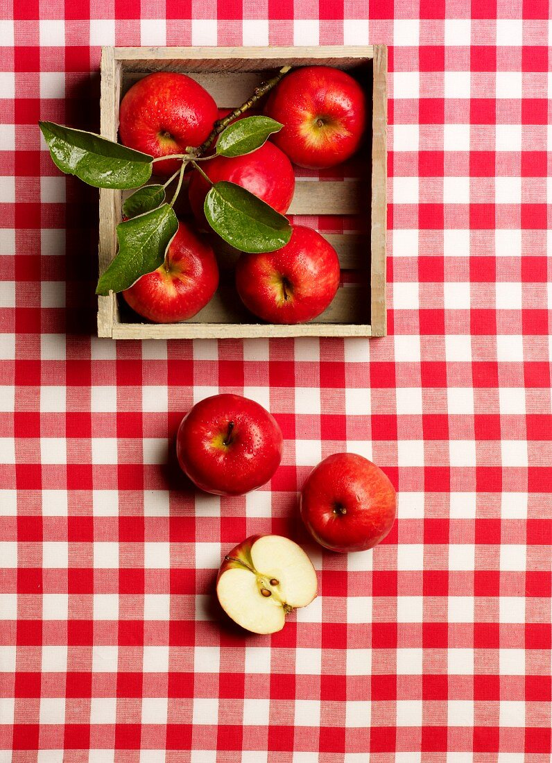 Red apples on a red and white checked tablecloth with a twig