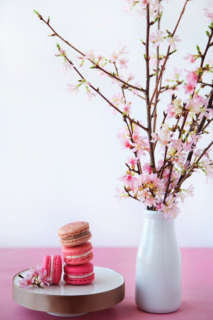 Macaroons next to a vase of cherry blossoms
