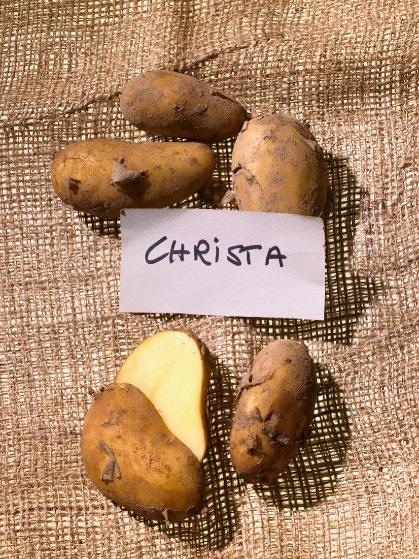 Christa potatoes