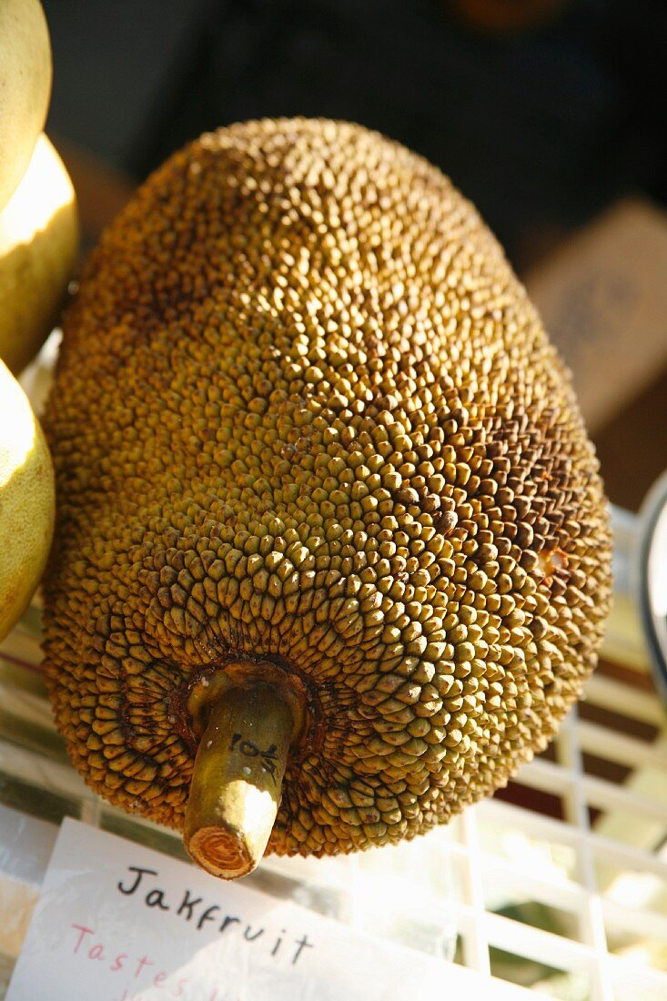 Fresh Organic Jakfruit at a Farmer's Market