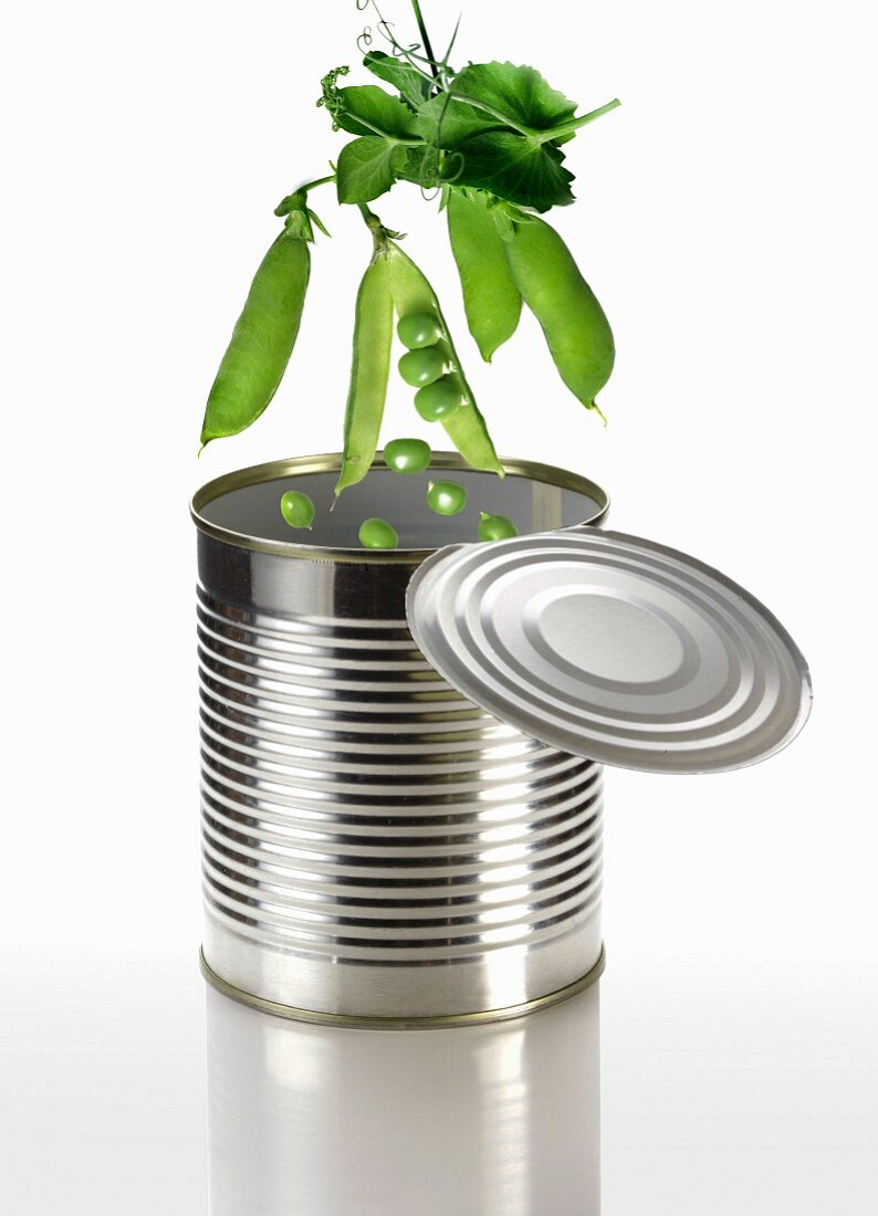Peas falling into a tin can