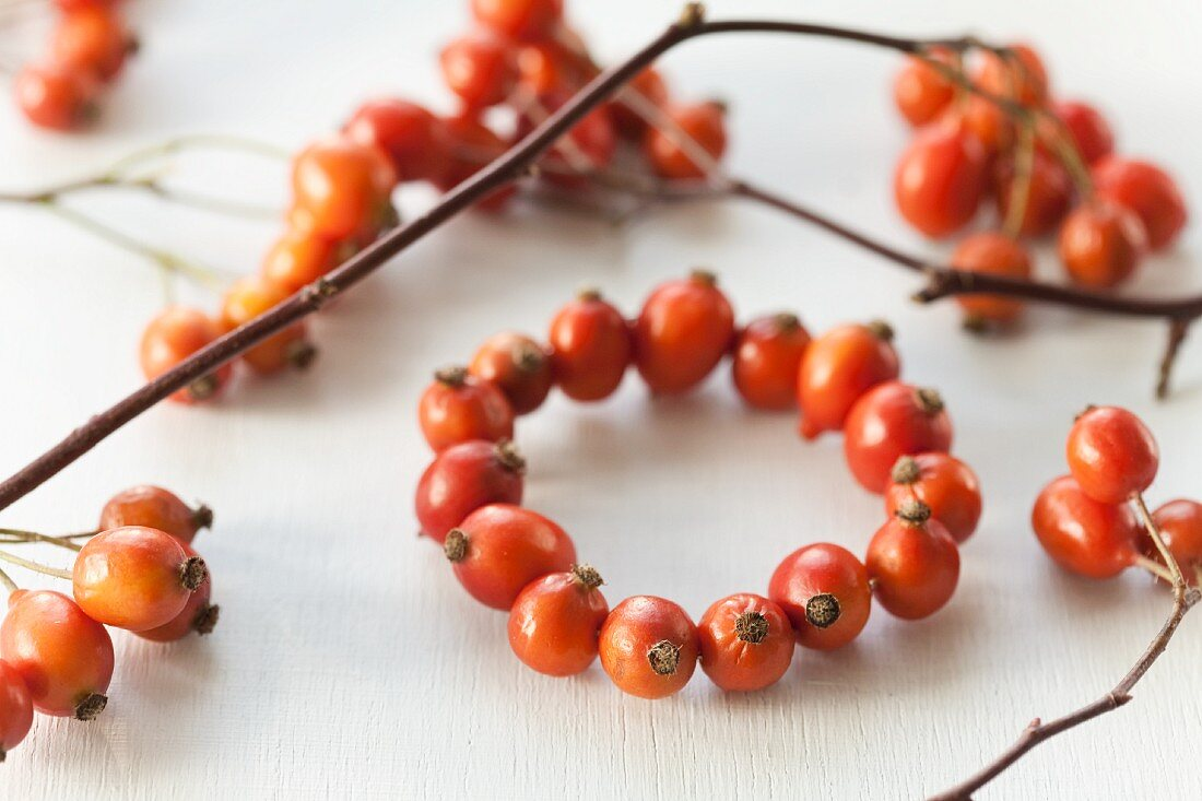 Hand-crafted wreath of rosehips