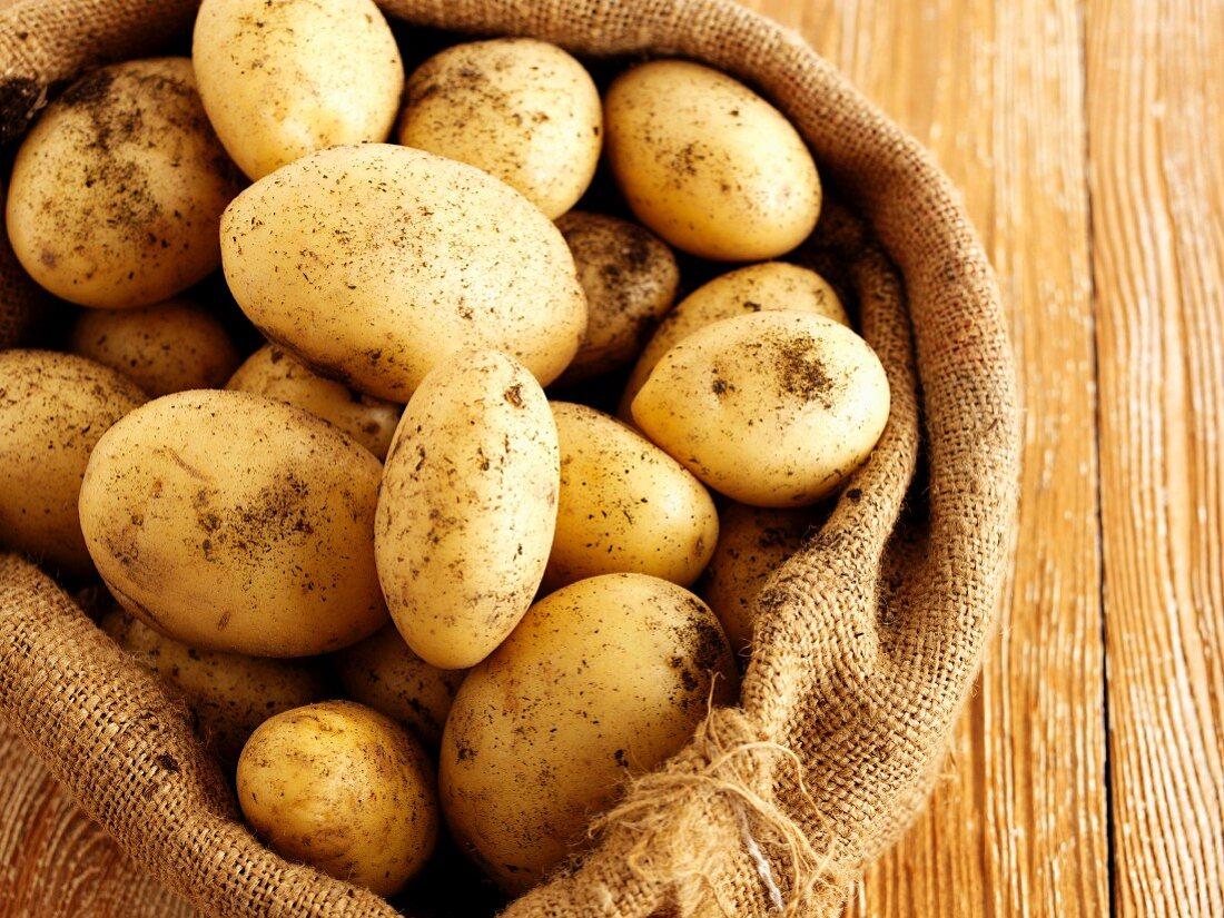 New potatoes in a jute sack