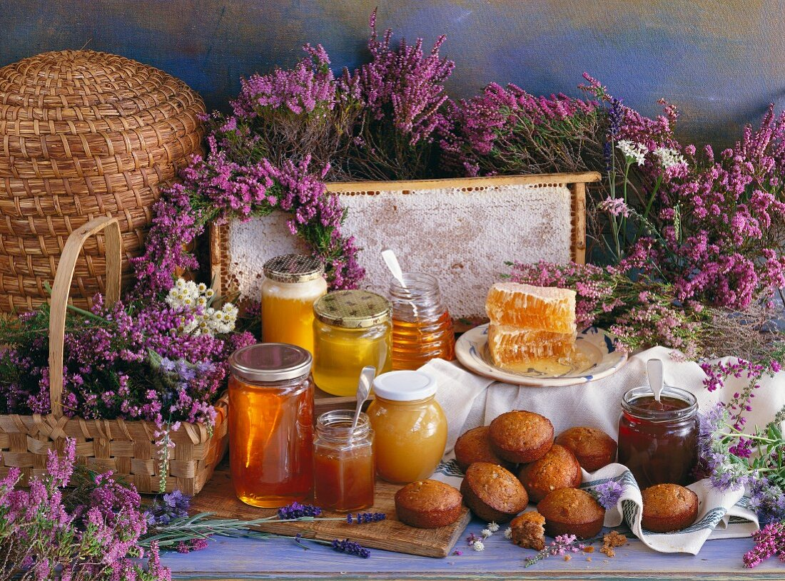 Various types of honey and honnettes (French honey cake)
