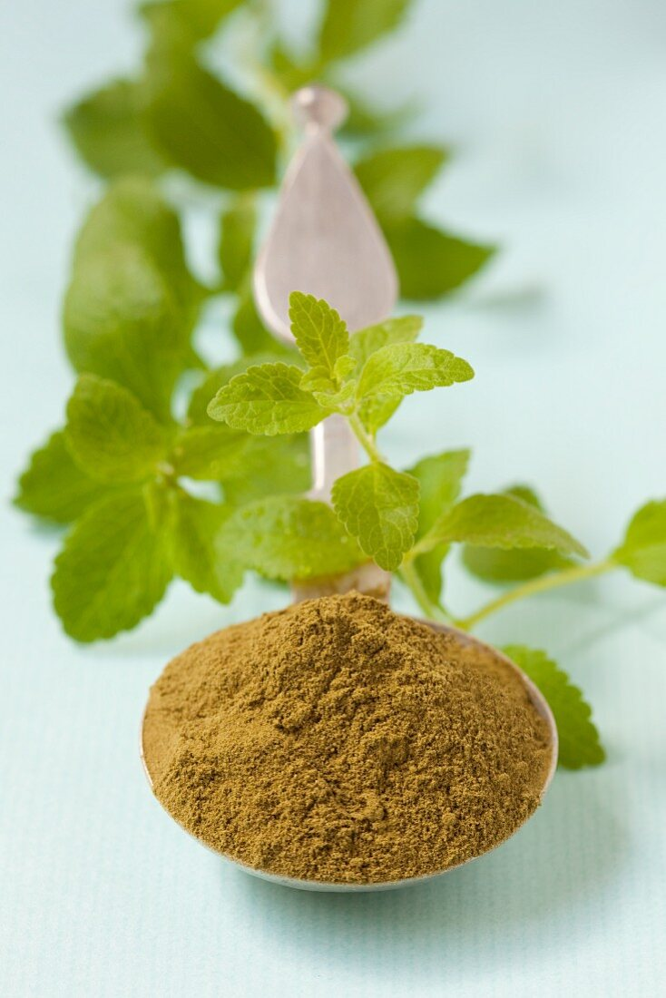 Stevia powder and stevia leaves