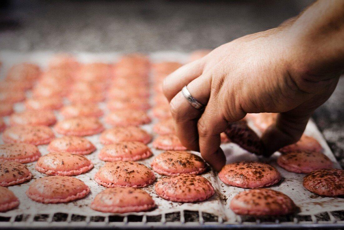 Freshly baked macaroons on baking paper