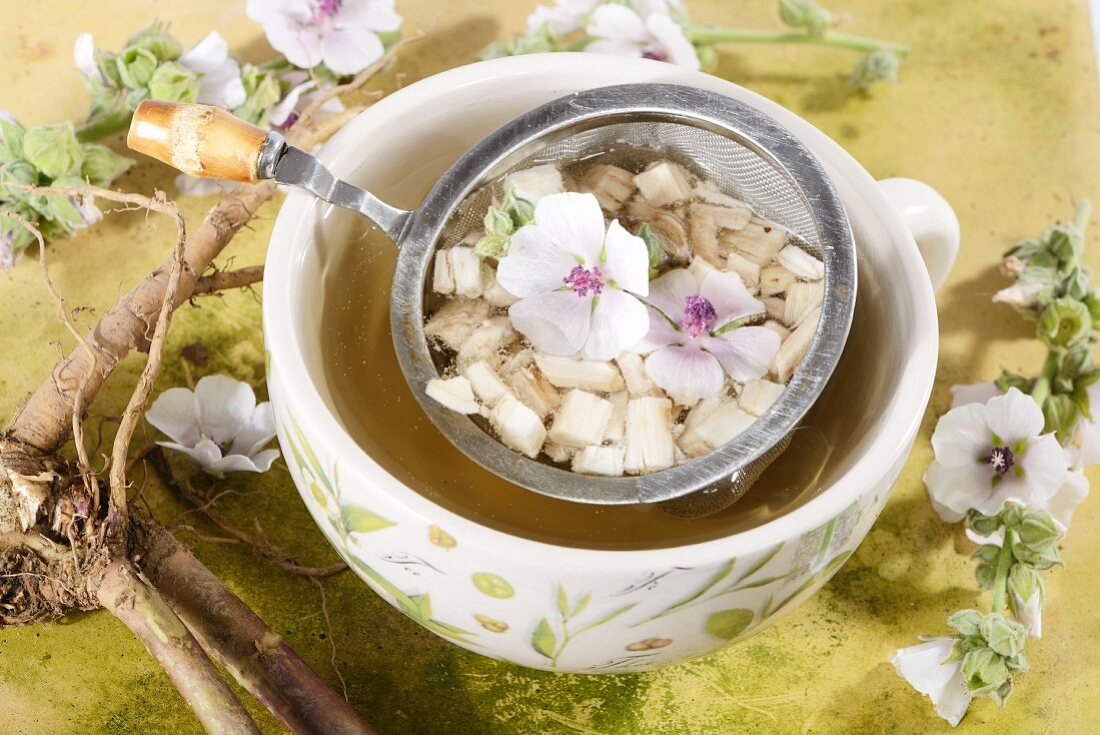 Marsh mallow root tea, roots and flowers