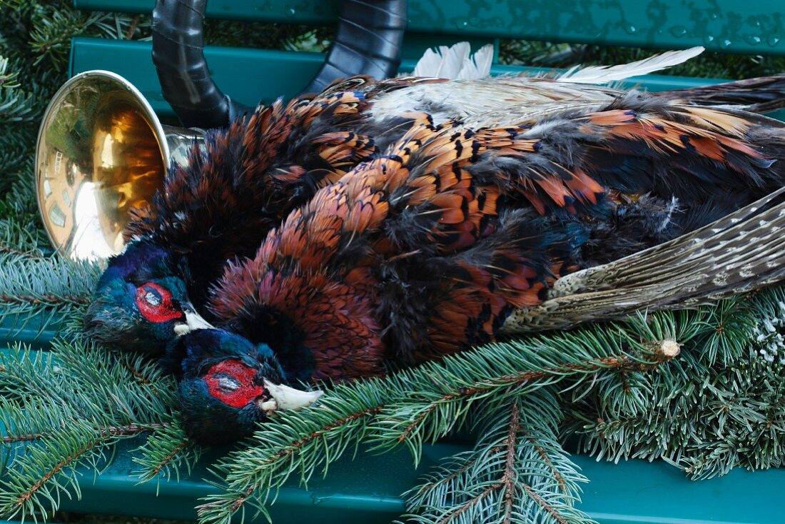 Pheasants and a hunting horn on a garden bench