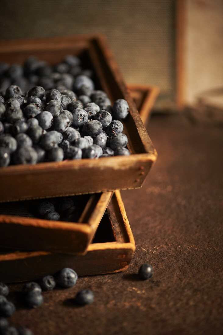 Fresh Blueberries in Wooden Boxes