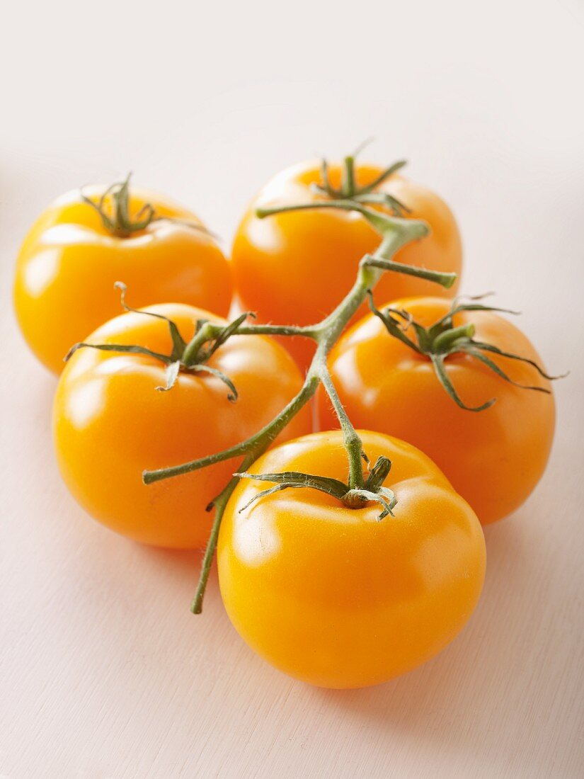 Yellow tomatoes of the variety 'Manyel'