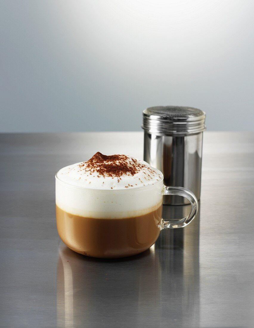 A cappuccino and a cocoa sprinkler on a polished metal surface