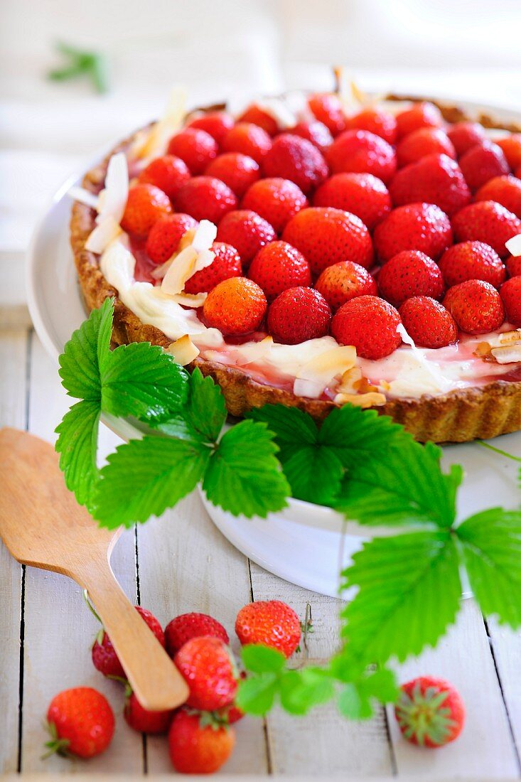 A fresh strawberry tart