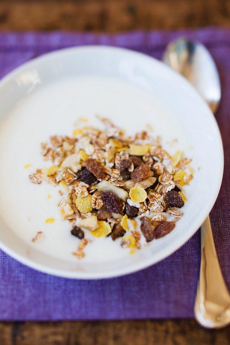 Muesli with raisins and yoghurt