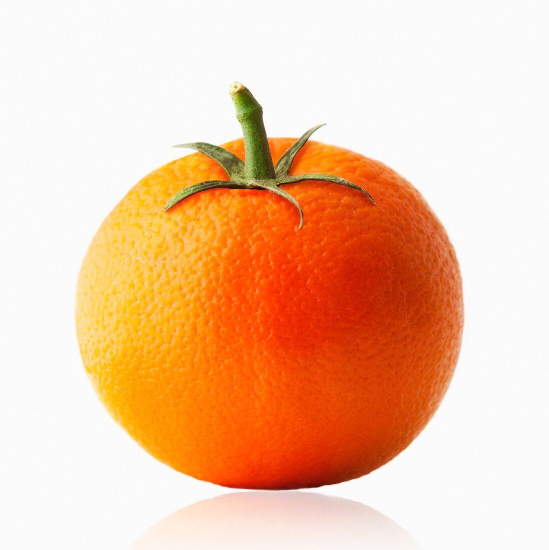 Orange with tomato stem