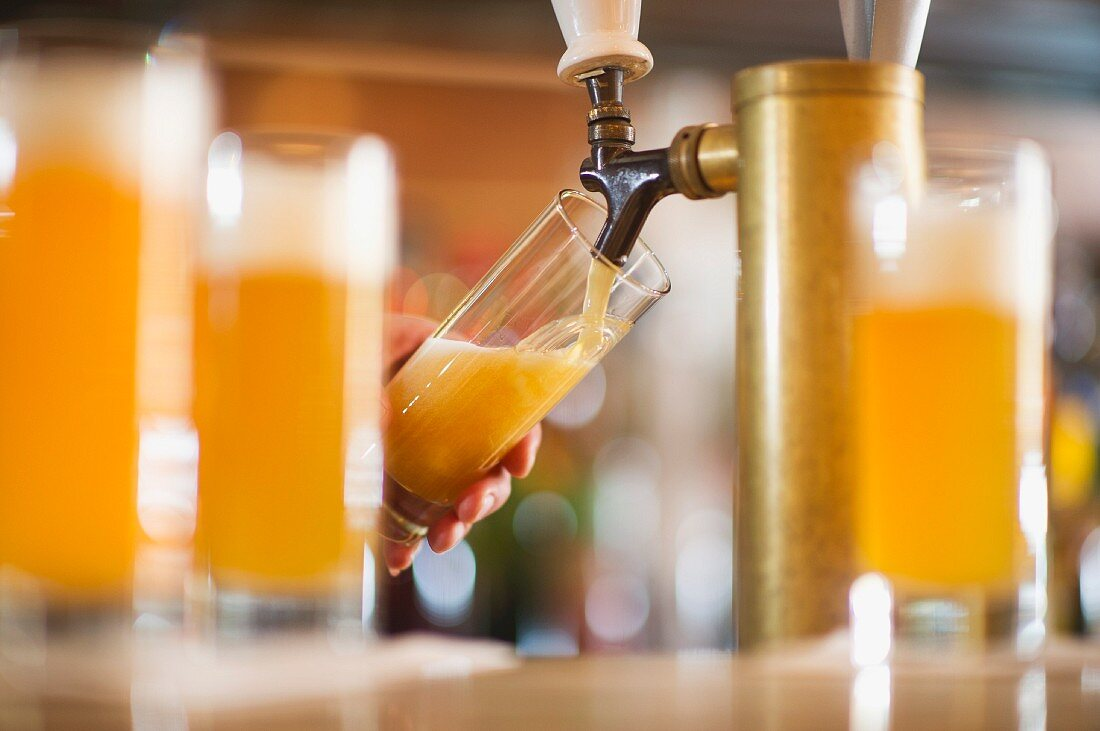 Barman poring beer from beer tap