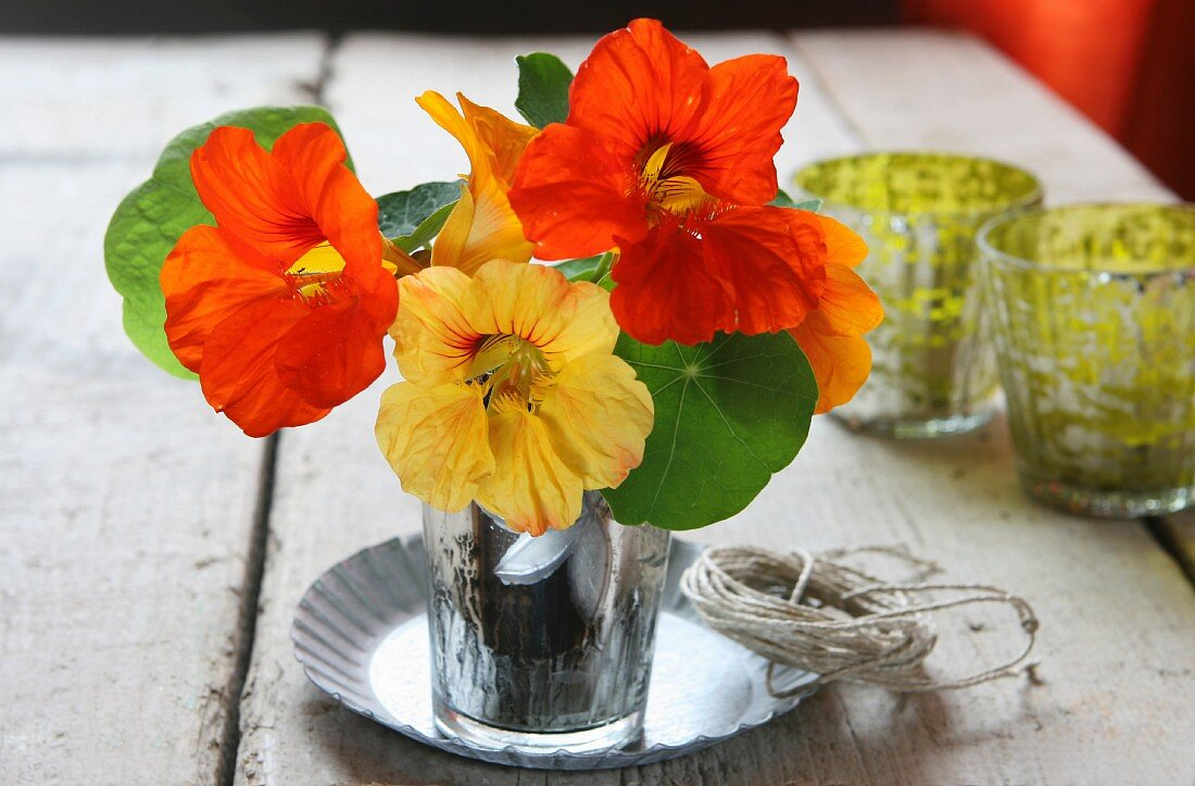 Nasturtium flowers in a water glass as a table decoration