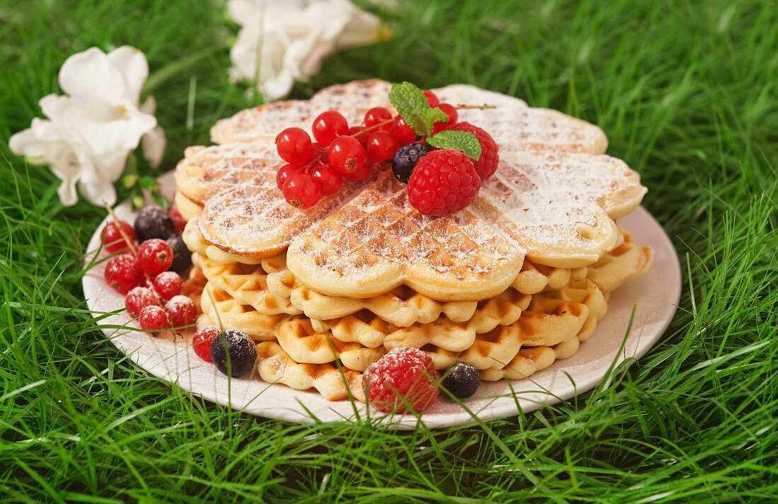 Waffles with raspberries, blueberries and redcurrants, in the grass