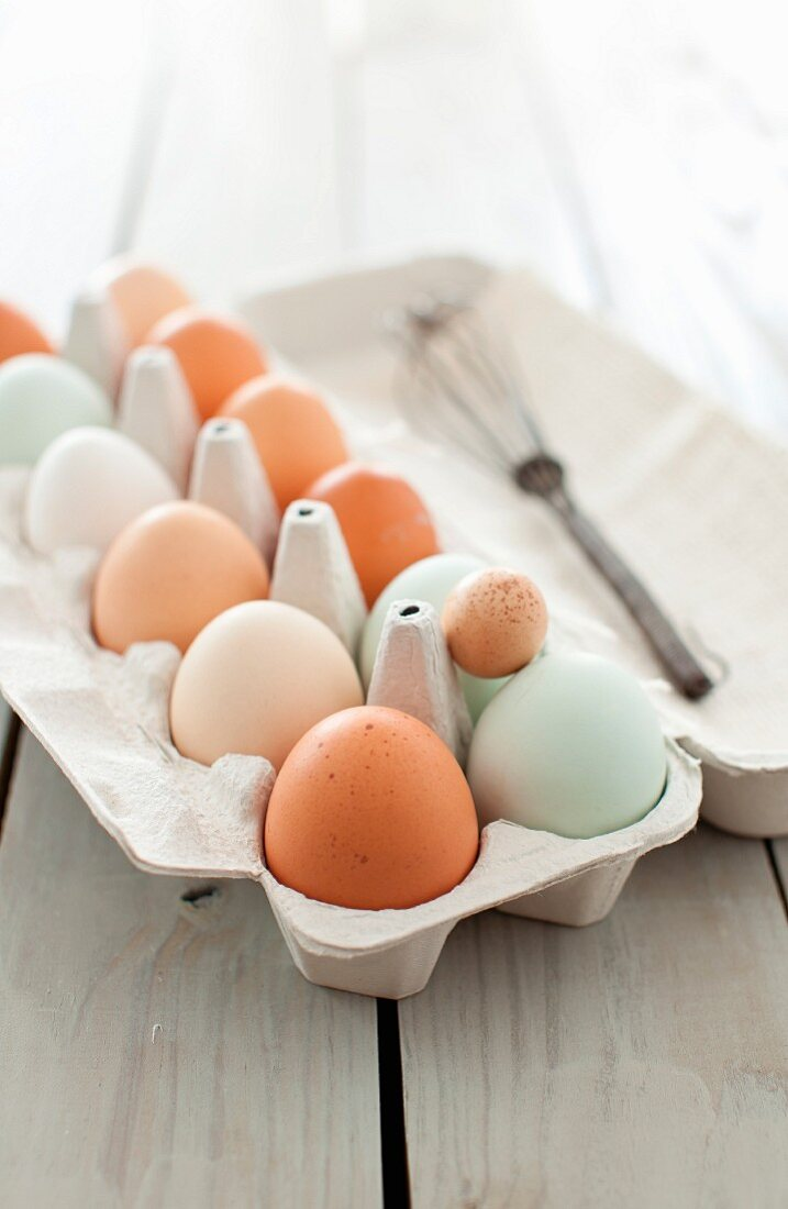 A Variety of Fresh Eggs in a Cardboard Egg Carton; Open with a Whisk
