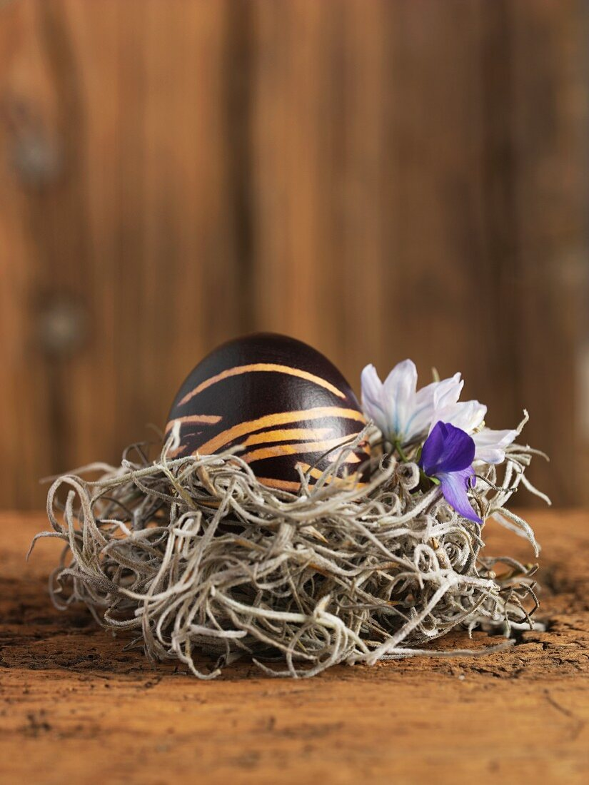 An egg painted in shades of brown for Easter with spring flowers in a nest