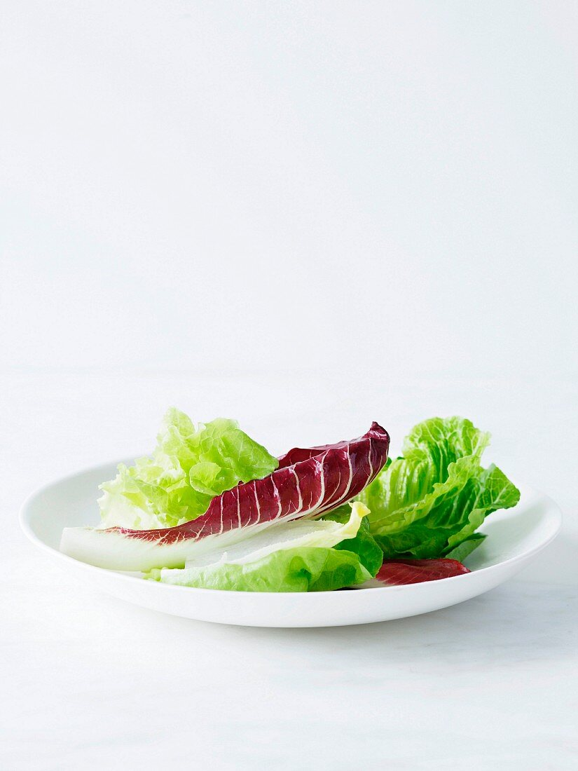 Mixed salad leaves on white plate
