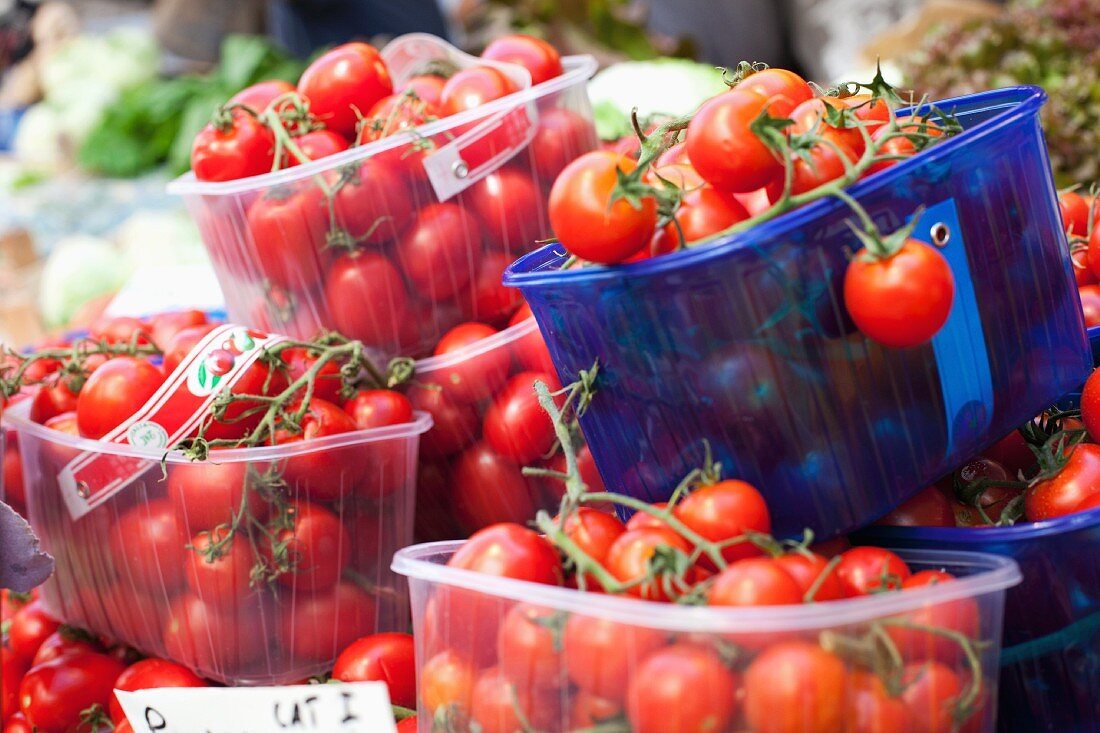 Cherry tomatoes in plastic containers at the market