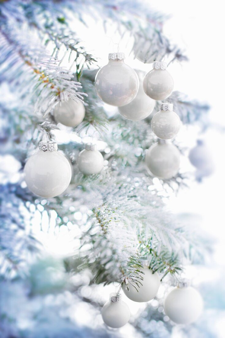 A Christmas tree with artificial snow and white baubles